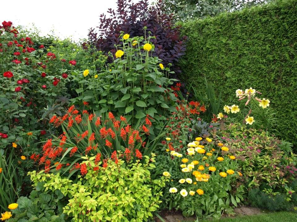 Farbenpr chtige beete f r jeden standort und jeden for Garten beetgestaltung